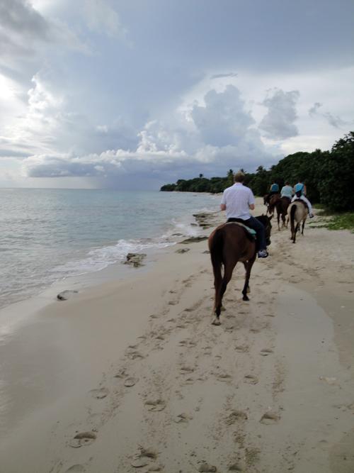 St. Croix Horseback Riding